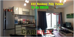 222 Residency, Renovated and Fully Furnish RM558,000