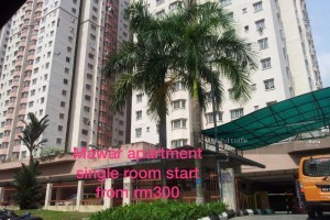 Bandar Baru Sentul Mawar Apartment single room for rent in Sentul